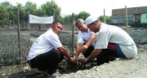 Gerakan Tanam Pohon Gencar Dilakukan di Medan Belawan