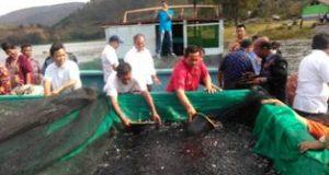 """Bupati Samosir Sambut Gembira """"Restocking"""" 50 Ribu Benih Ikan Nila"""