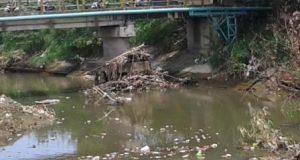Pemko Ajak Publik Bersih-Bersih Sungai Deli