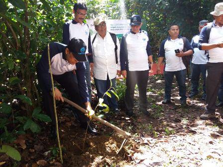 PDAM Tirtanadi Tanam Pohon Peringati Hari Bumi 2018